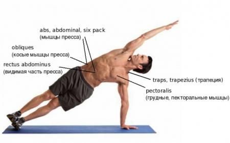Англо-русский перевод терминов на тему фитнеса