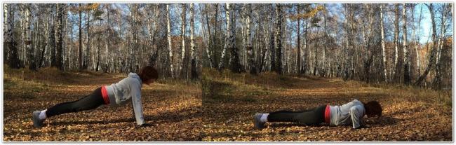 отжимания в упоре лежа в лесу