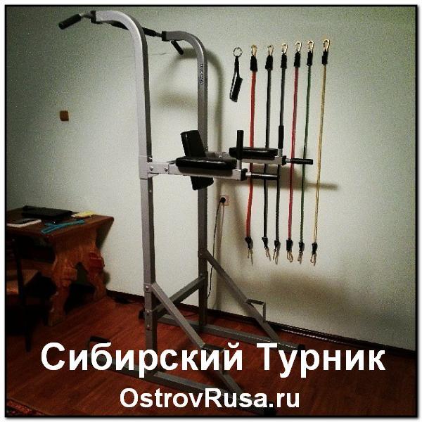 Сибирский Турник эксперимент