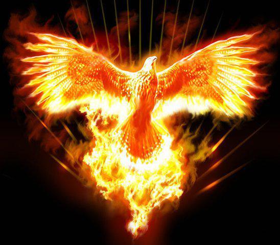 Феникс возрождается из пепла