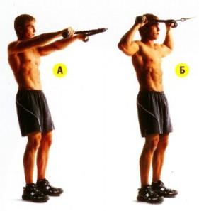 День 62. Тренировка мышц кора плечевых суставов