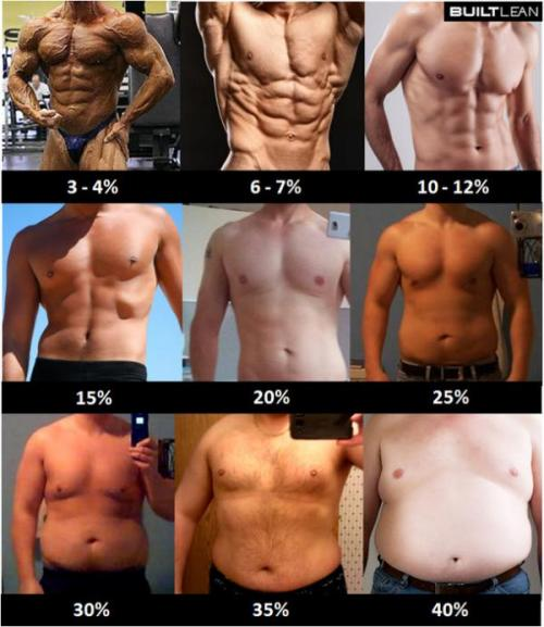 Процент жира_Мужчины