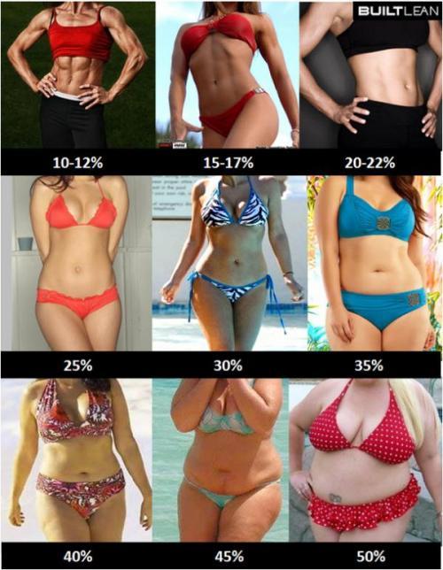 День 40. Процент жира у женщин