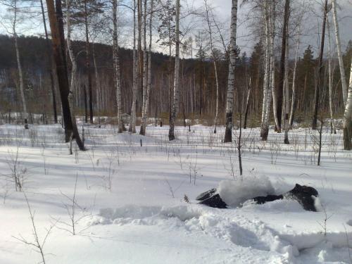 Снег_3