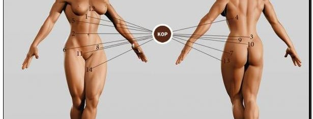 мышцы кора рисунок