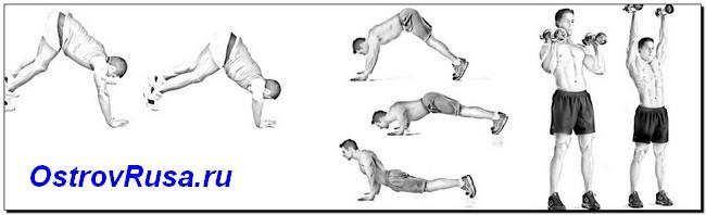 вертикальные жимы упражнения