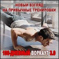 100 дневный воркаут 3