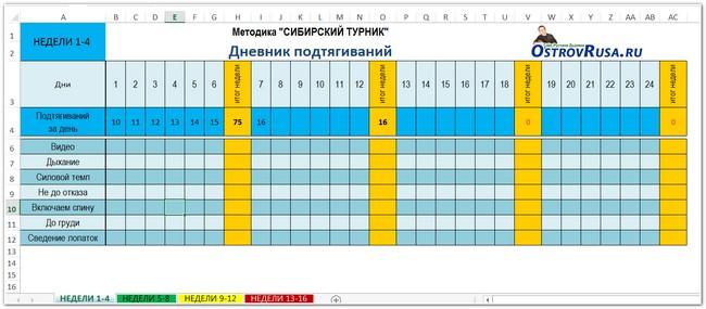 Дневник подтягиваний по методике Сибирский Турник