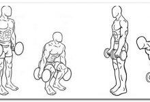 Приседания и румынская тяга упражнения