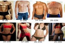 процент жира в теле