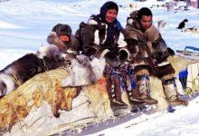 Инуиты Гренландии зимой