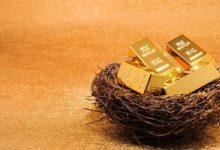 Гнездо с золотом
