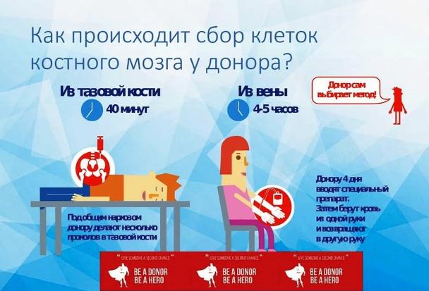 Сколько платят донору костного мозга в России