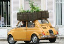 Можно ли выехать из Москвы на дачу на машине: на личном транспорте, людям старше 65 лет