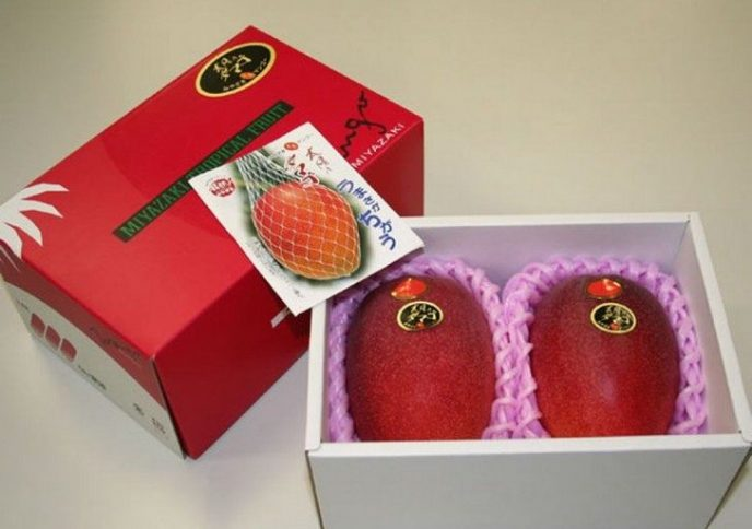Спелые плоды красного манго в коробке