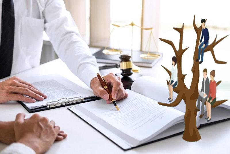Генеалогическое древо и работающие с книгой актов люди