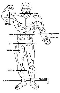 Измерения объемов тела