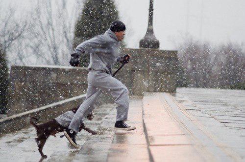 Сталонне с собакой бежит по лестнице