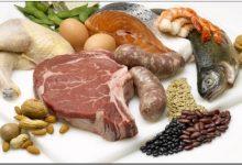 Белковые продукты в нашем питании