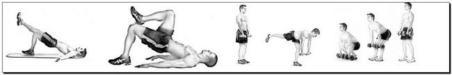тазово-доминантные упражнения
